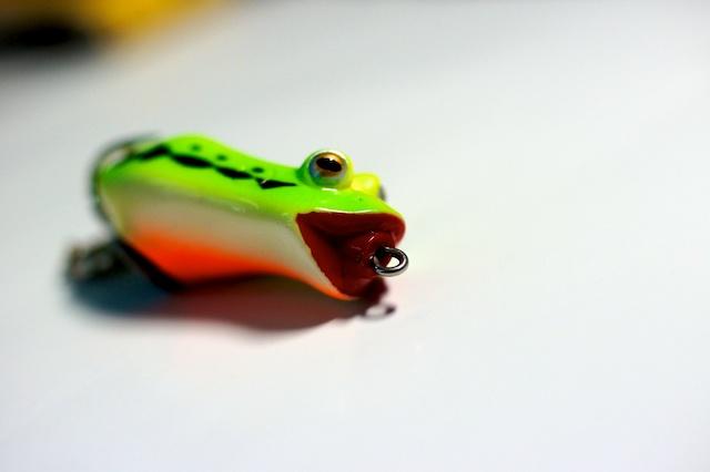 http://somanyfish.free.fr/blog/sasuke/basho_frog3.jpg